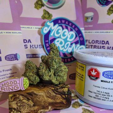 Mood Ring Florida Citrus Kush